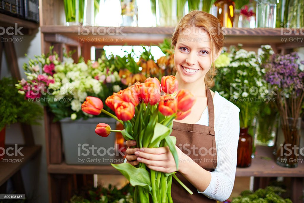 First tulips stock photo