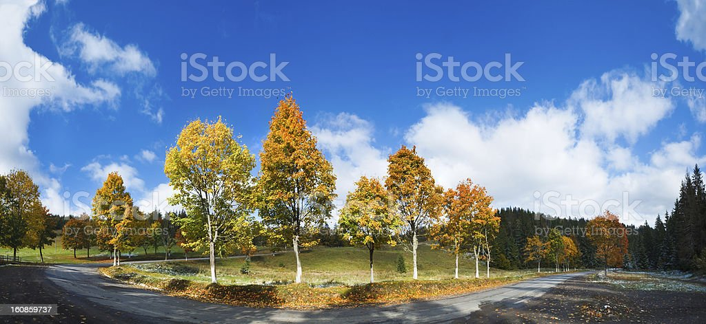 First winter snow and autumn colorful trees near country road royalty-free stock photo