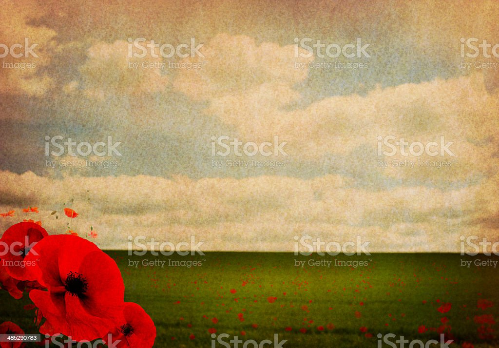 WW1 First World War Abstract Background with Poppies stock photo