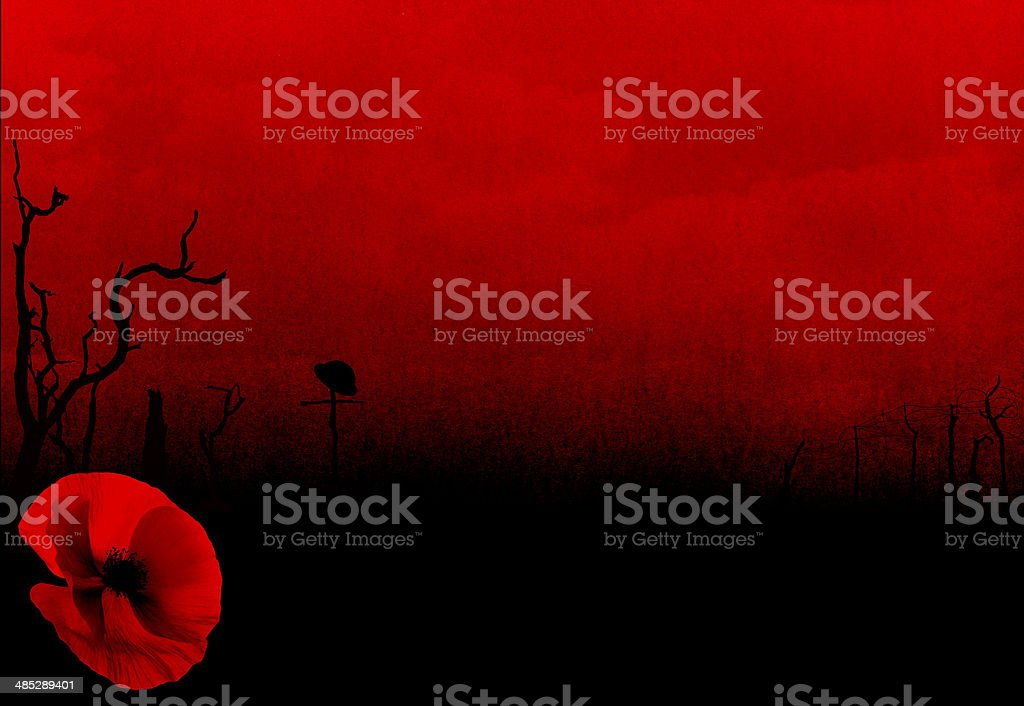 WW1 First World War Abstract Background with Poppy stock photo