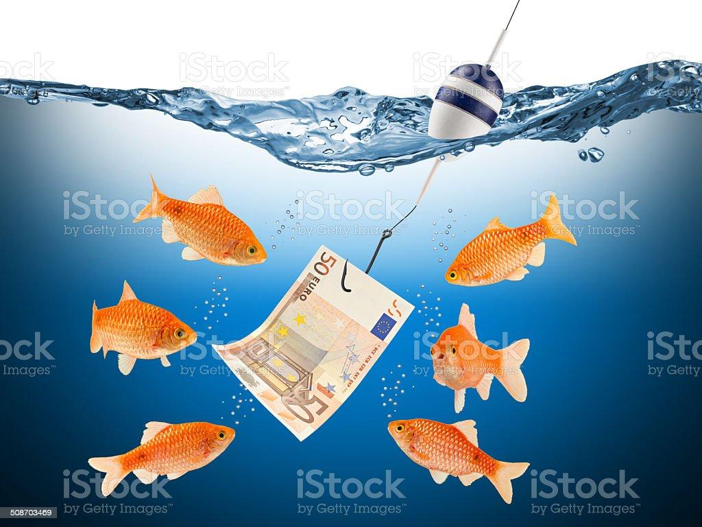 fisch euro teaser concept stock photo