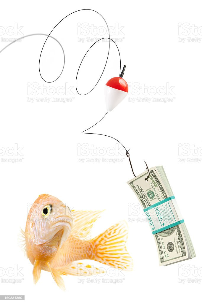 Fish about to bite fishing bait with 100 dollar bills stock photo