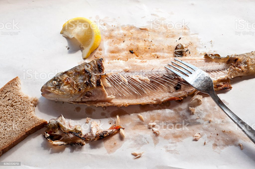 Fish and bread - leftovers stock photo