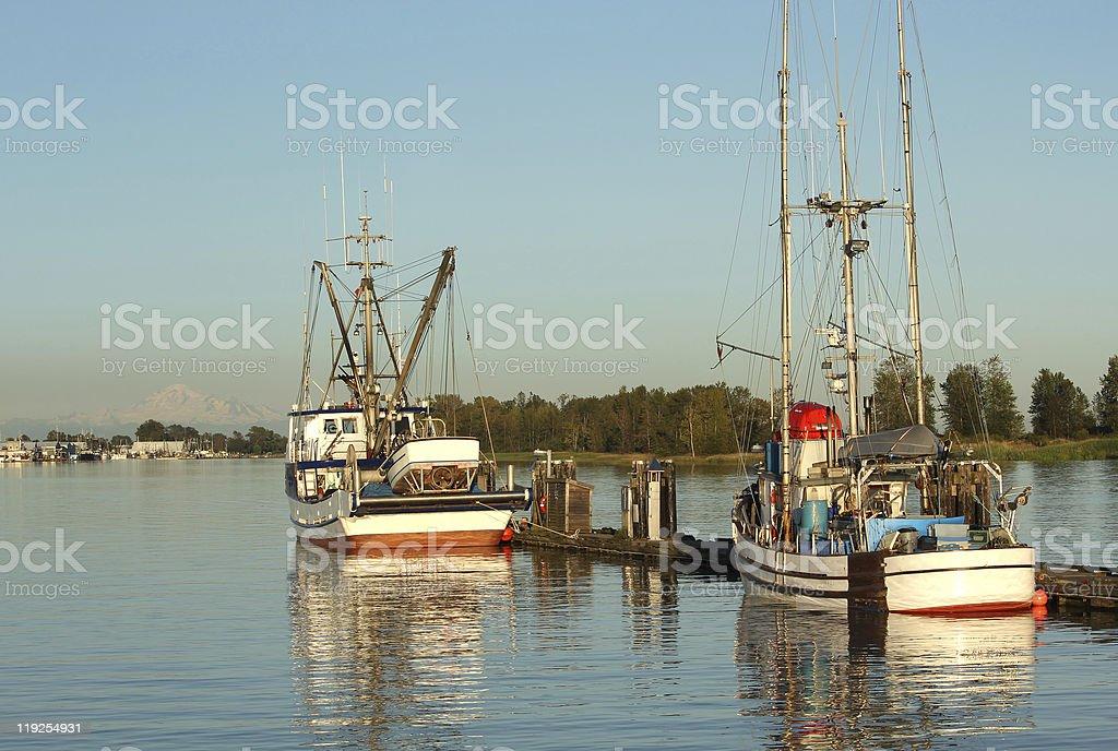 Fish Boats Docked in Steveston stock photo