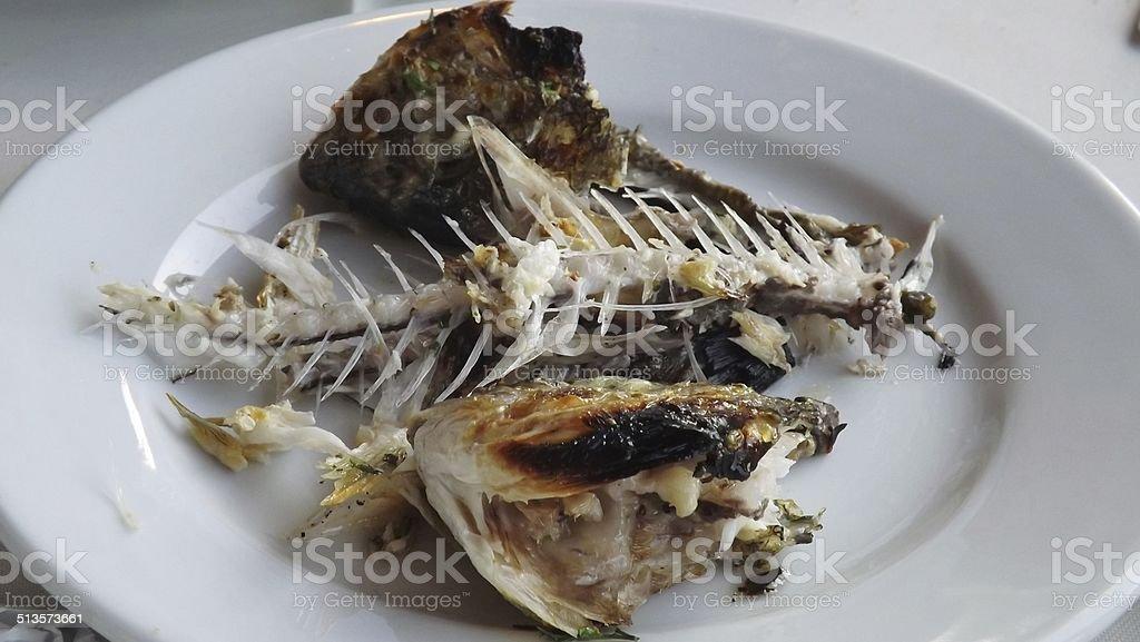 Fish bones stock photo