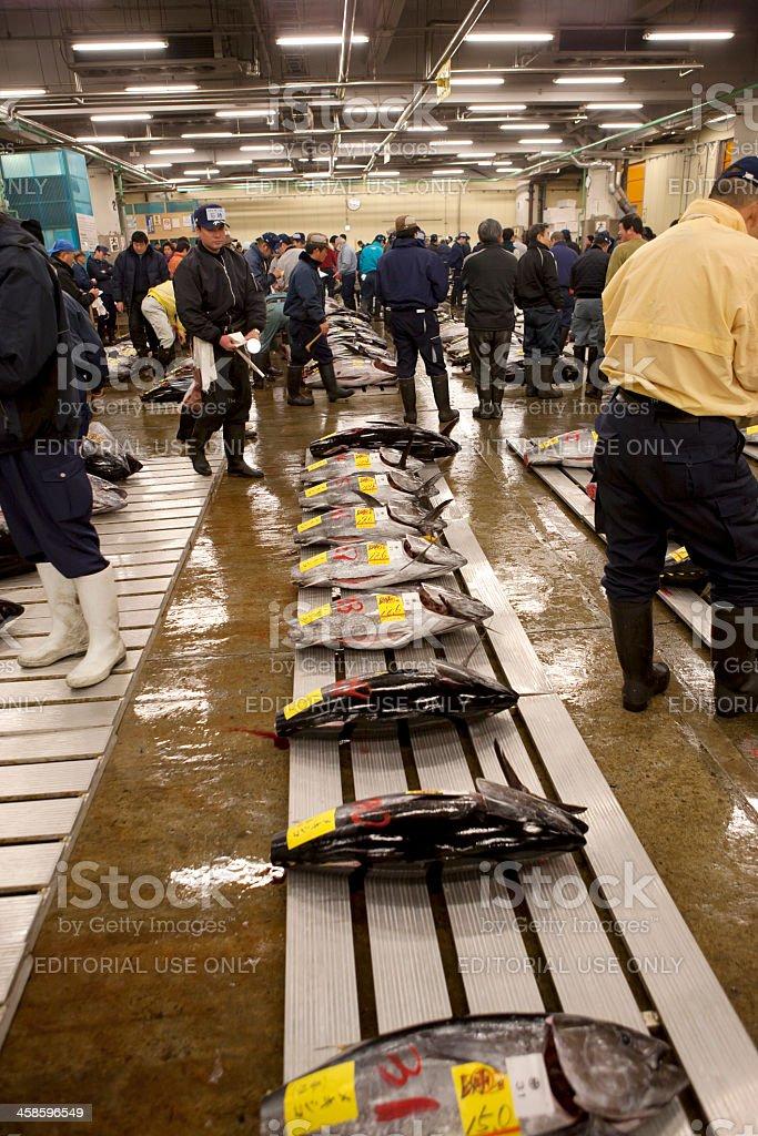 Fish buyers inspect tuna quality at Tokyo Fishmarket stock photo