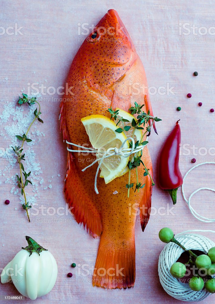fish composition royalty-free stock photo