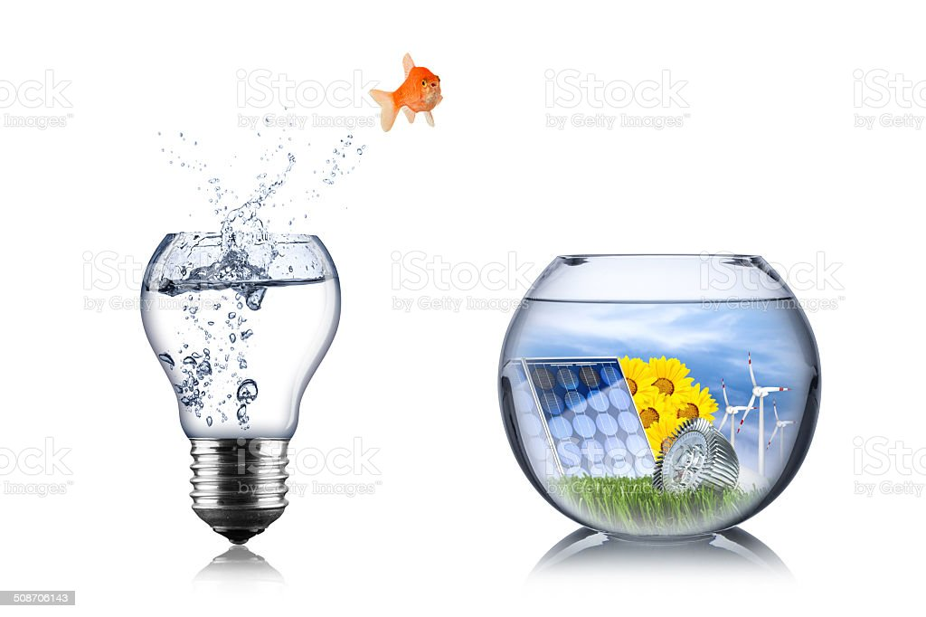 fish energy change concept stock photo