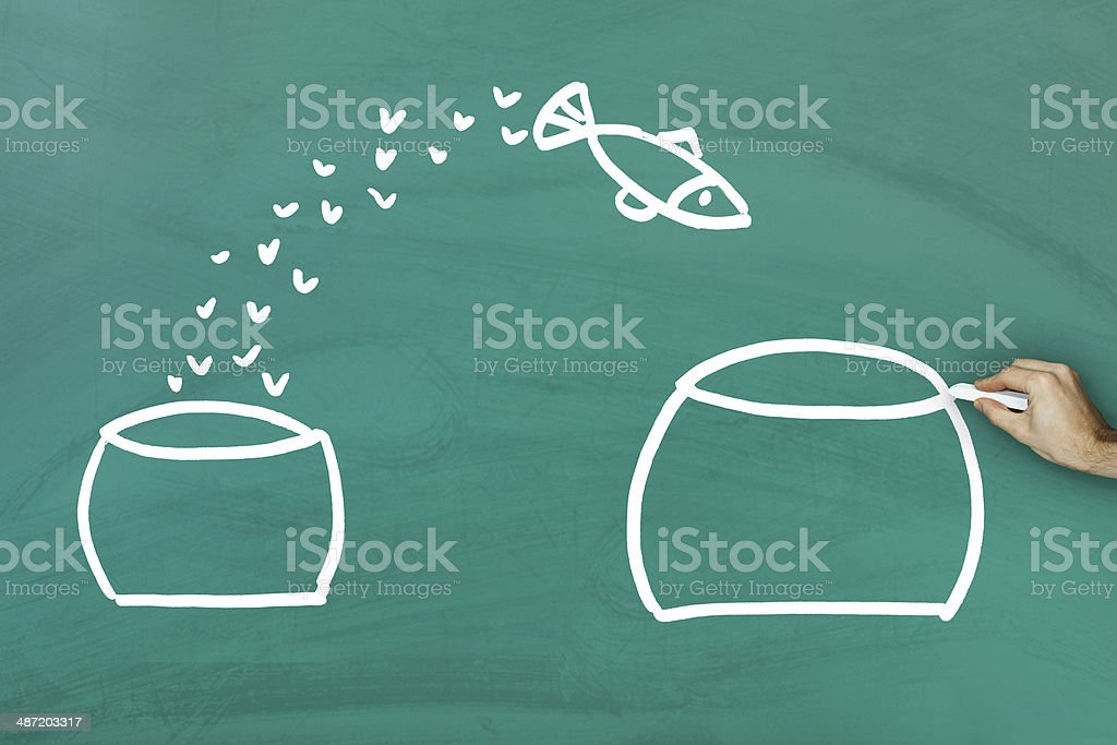 Fish escaping into bigger tank stock photo