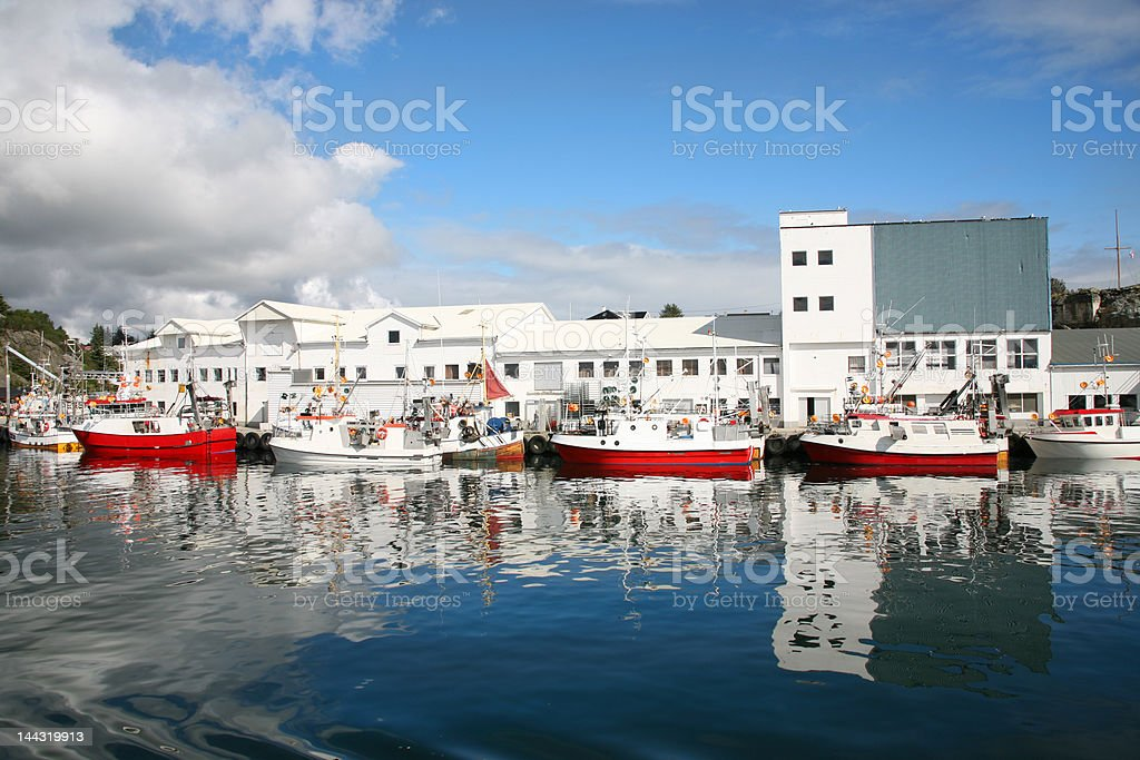 Fish factory royalty-free stock photo