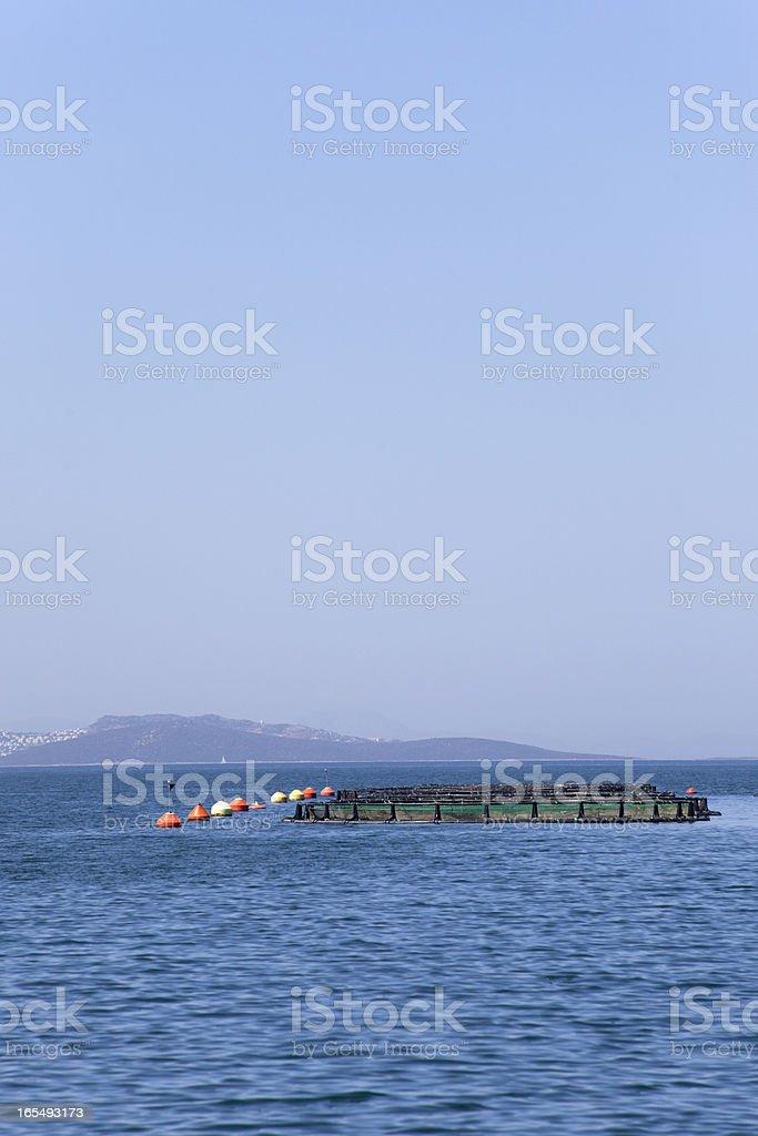 fish farms at coast of bodrum mugla turkey royalty-free stock photo