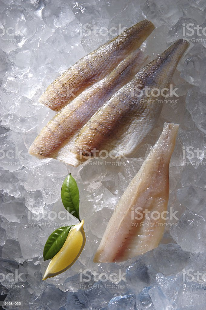 Fish fillet on the ice royalty-free stock photo