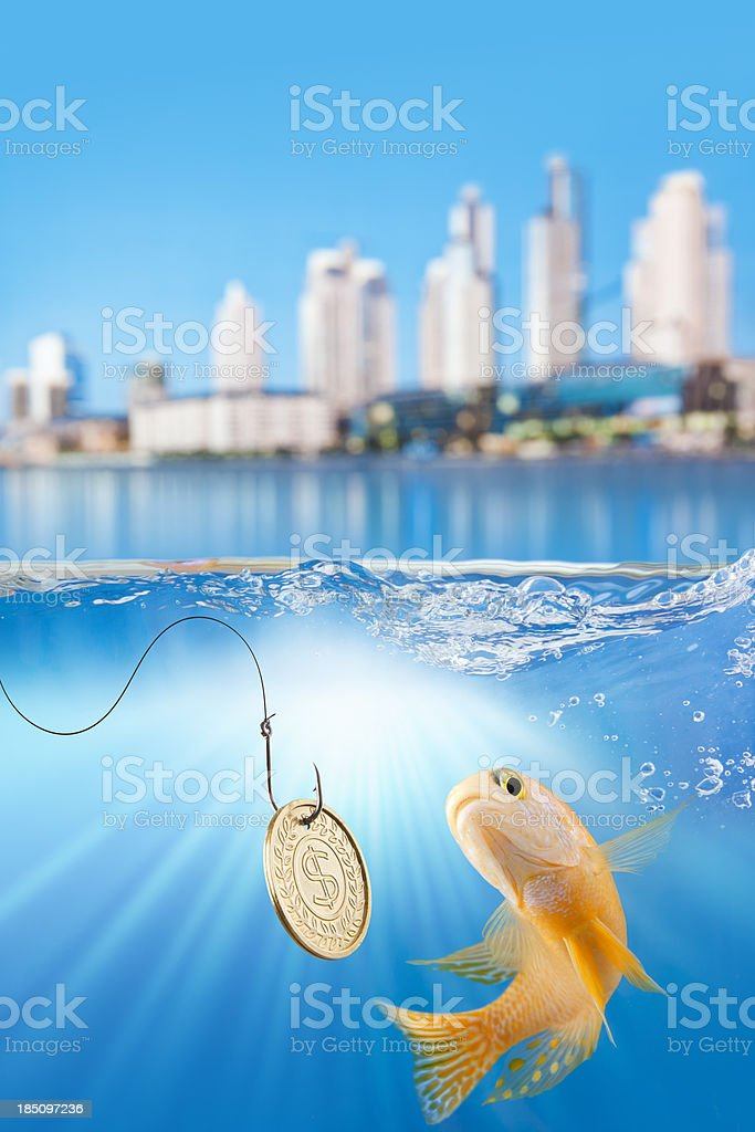 Fish fishing bait with dollar coin and cityscape stock photo