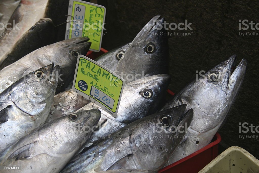Fish for dinner royalty-free stock photo