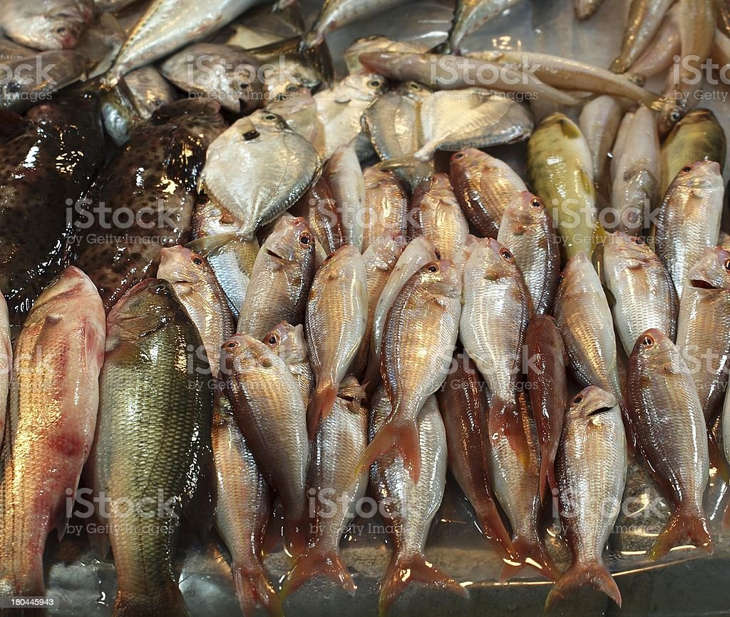 Fish for Sale in Taiwan royalty-free stock photo