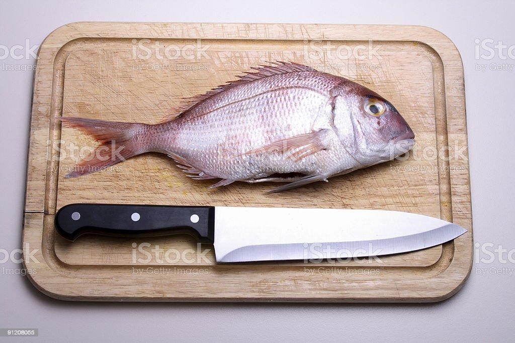 fish gilthead blade royalty-free stock photo