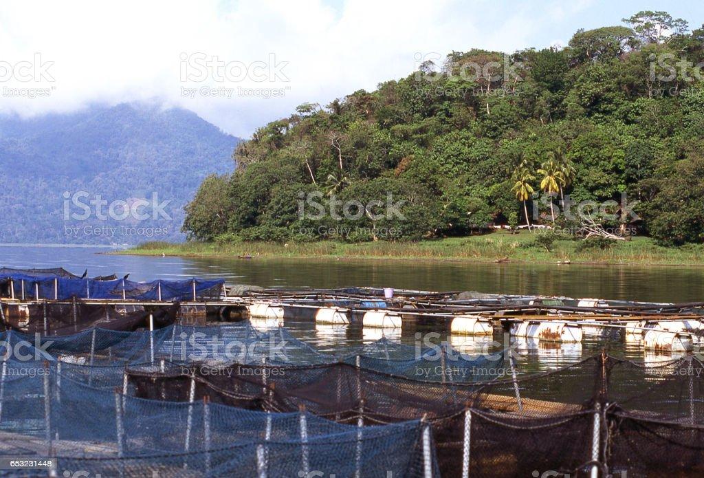 Fish hatchery along shores of Lago de Yojoa for reestablishing bass in lake near Pena Blanca Honduras Central America stock photo