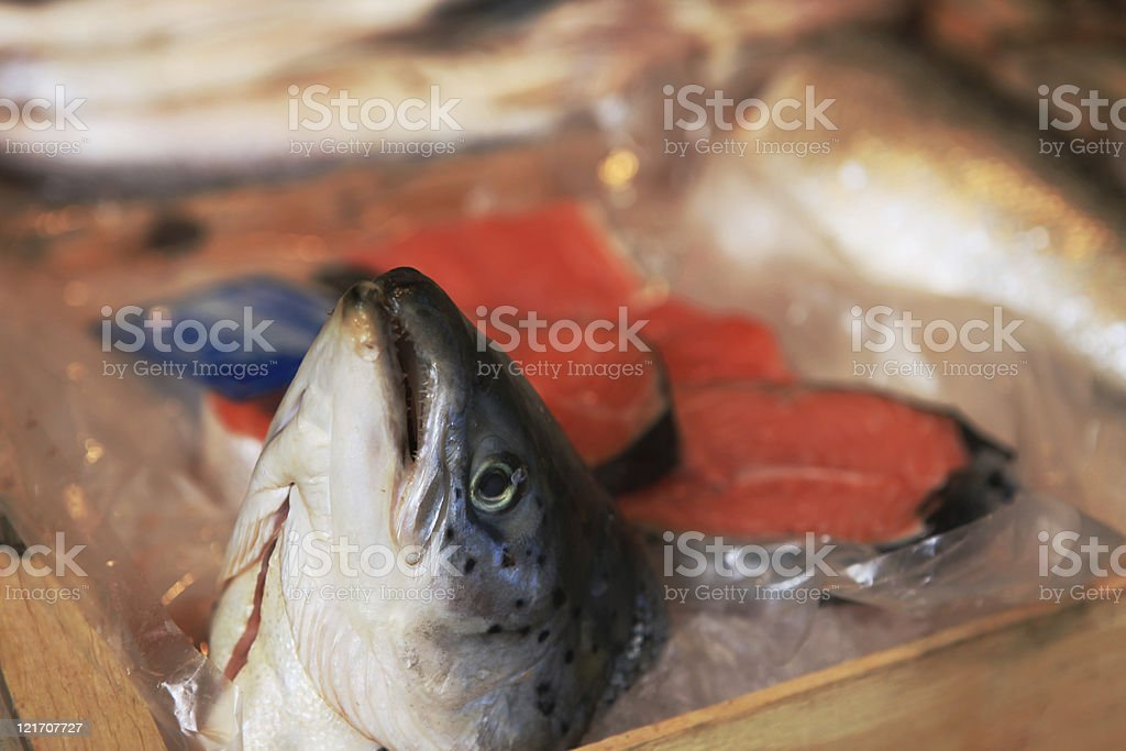 Fish head and steak of salmon royalty-free stock photo