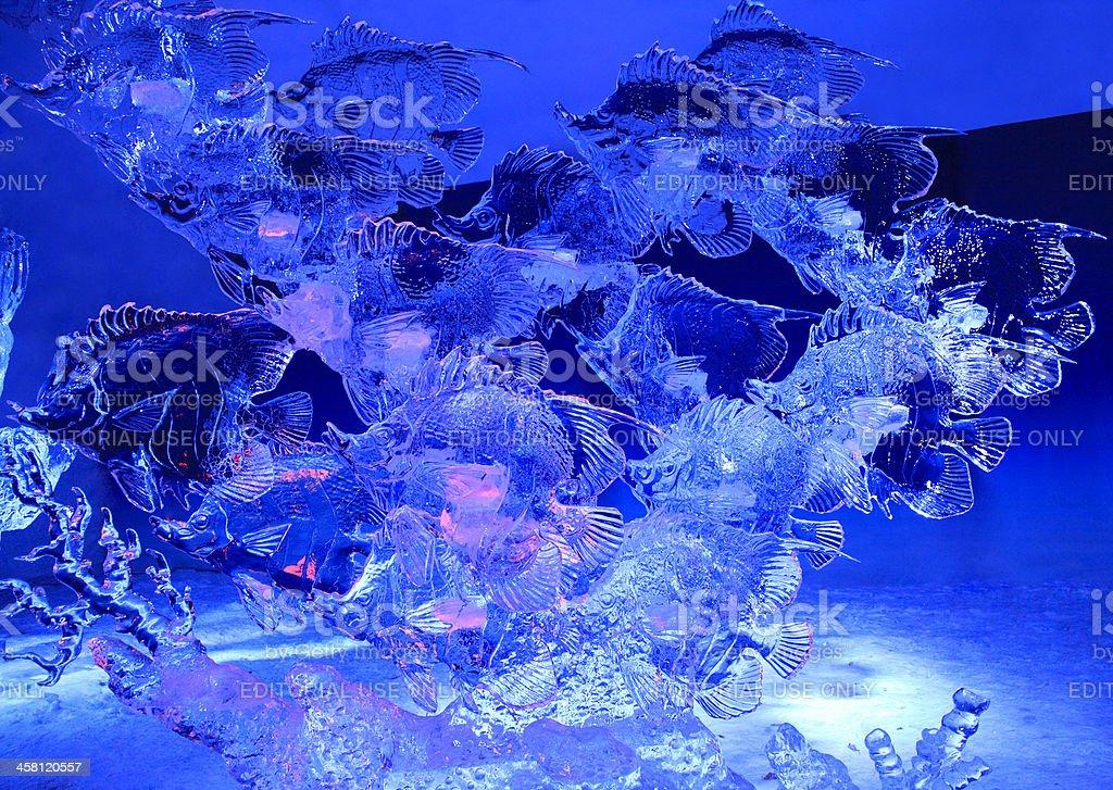 Fish ice sculpture at night stock photo