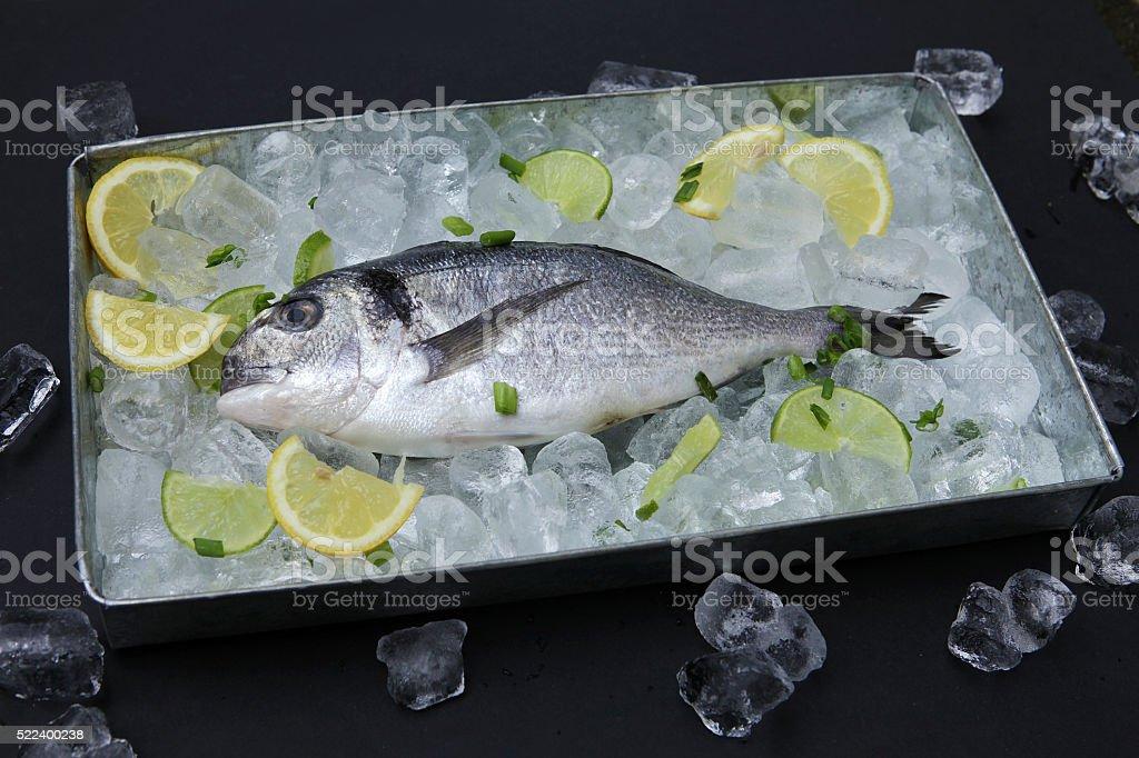 Fish in tray stock photo