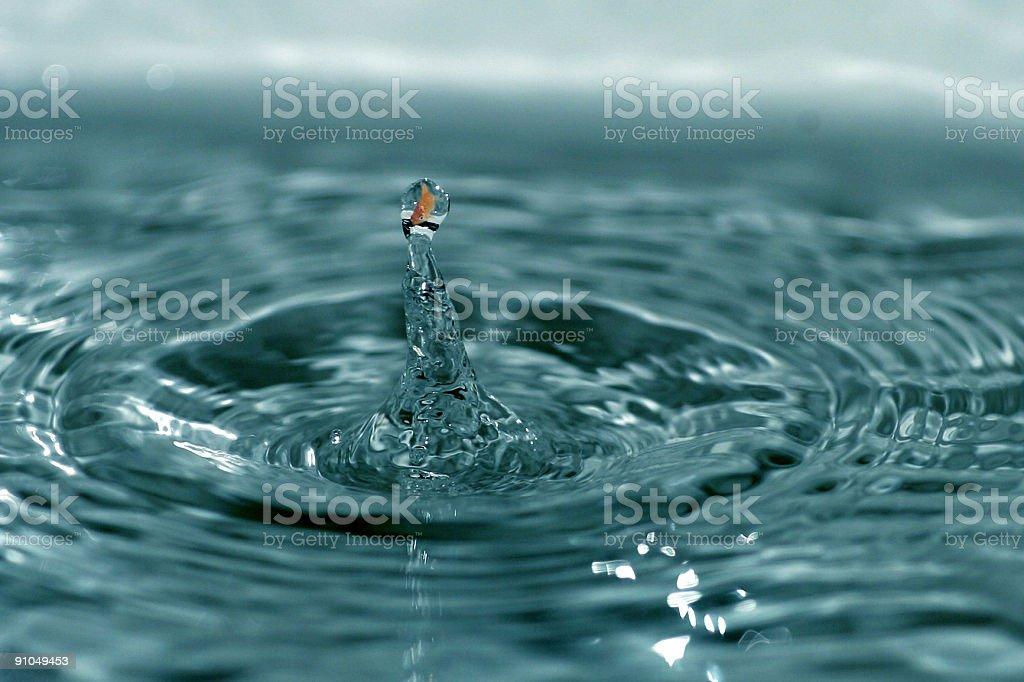 Fish inside water drop royalty-free stock photo