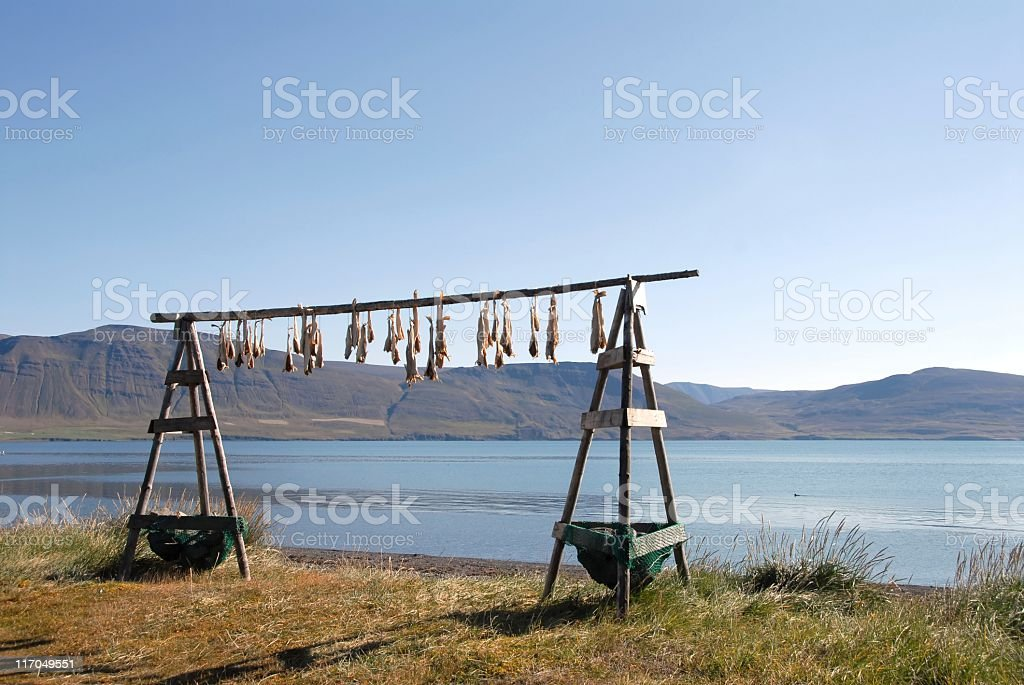 Fish is drying on a wooden rack royalty-free stock photo
