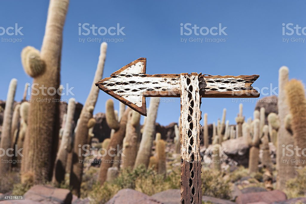 Isla del Pescado on Salar de Uyuni royalty-free stock photo