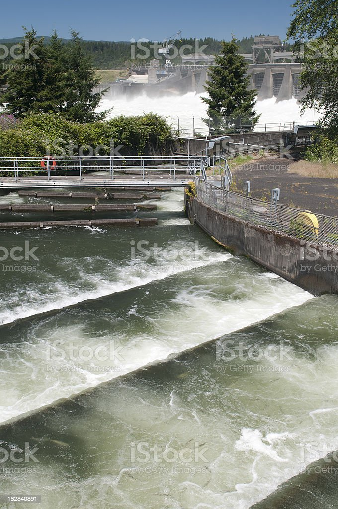 Fish Ladder and Dam Spillway stock photo