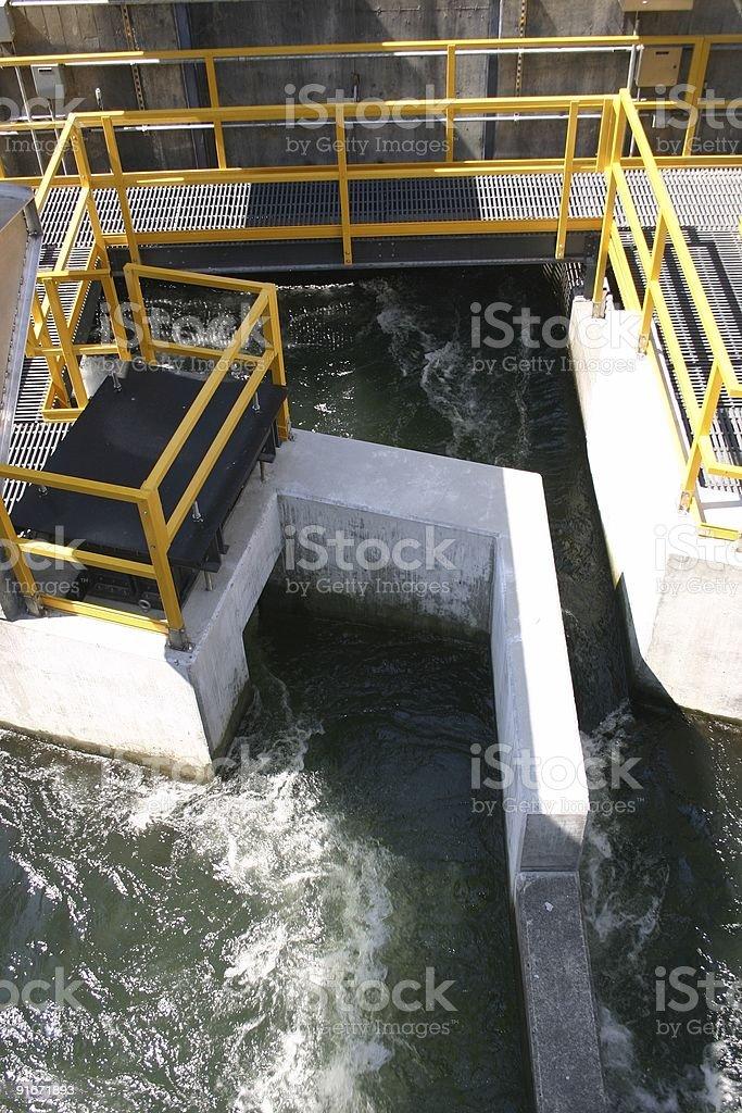 Fish Ladder at the Bonneville Dam. stock photo