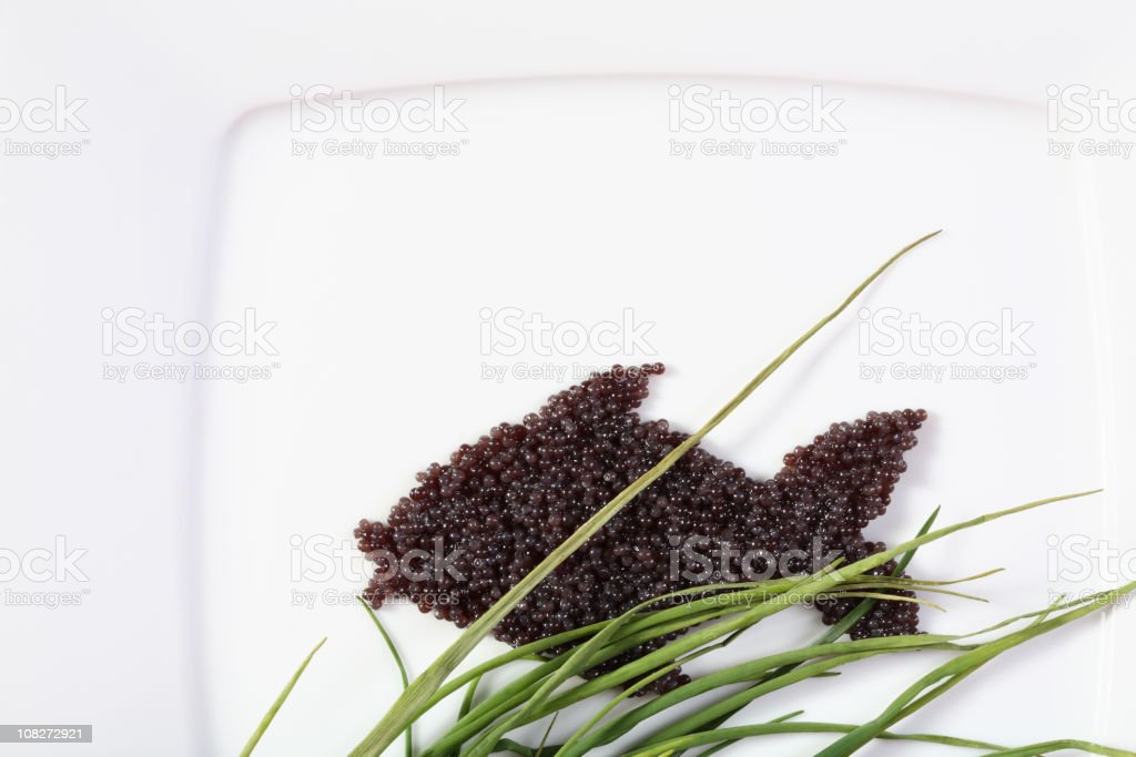 Fish made of caviar on white plate royalty-free stock photo