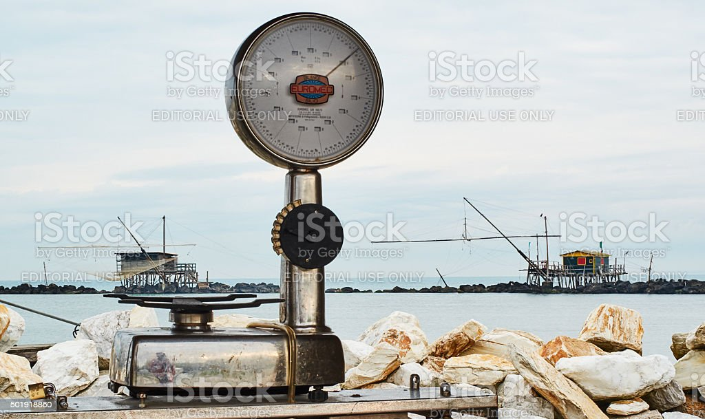 Fish market by the sea - a scale stock photo
