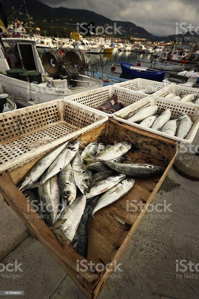 Fish Market. Color Image stock photo