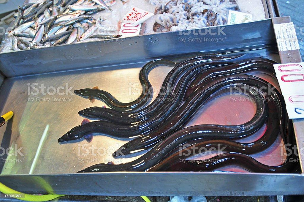 Fish Market Eels stock photo