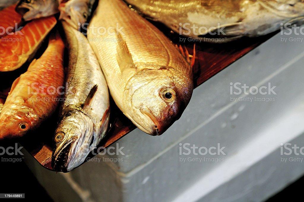 Fish market royalty-free stock photo