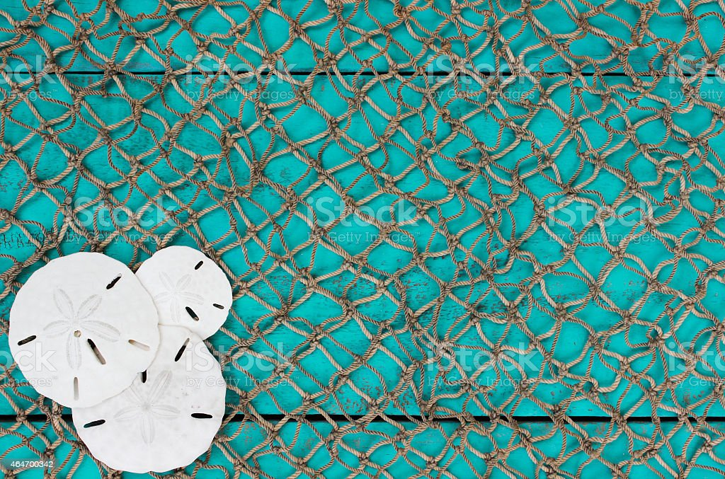 Fish net background with sand dollars collage stock photo