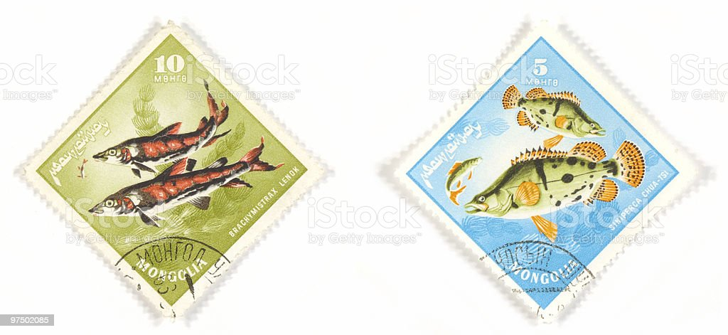 Fish of Mongolia on stamps stock photo