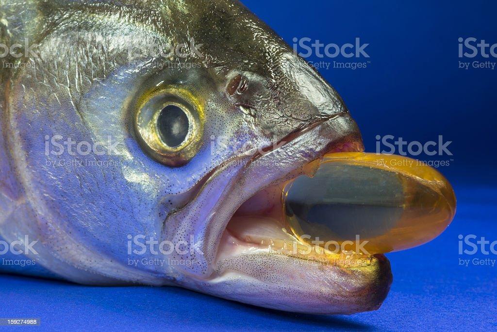 Fish Oil Capsule royalty-free stock photo