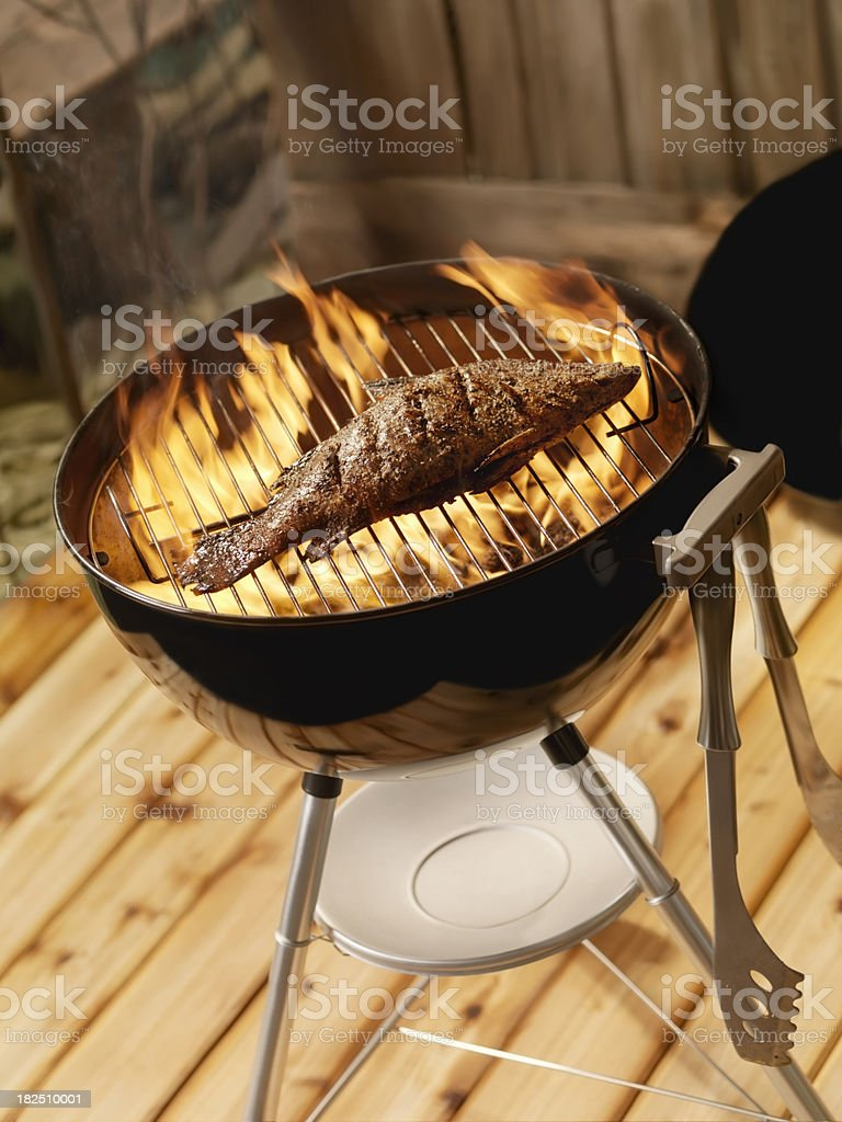 Fish on a Charcoal BBQ royalty-free stock photo