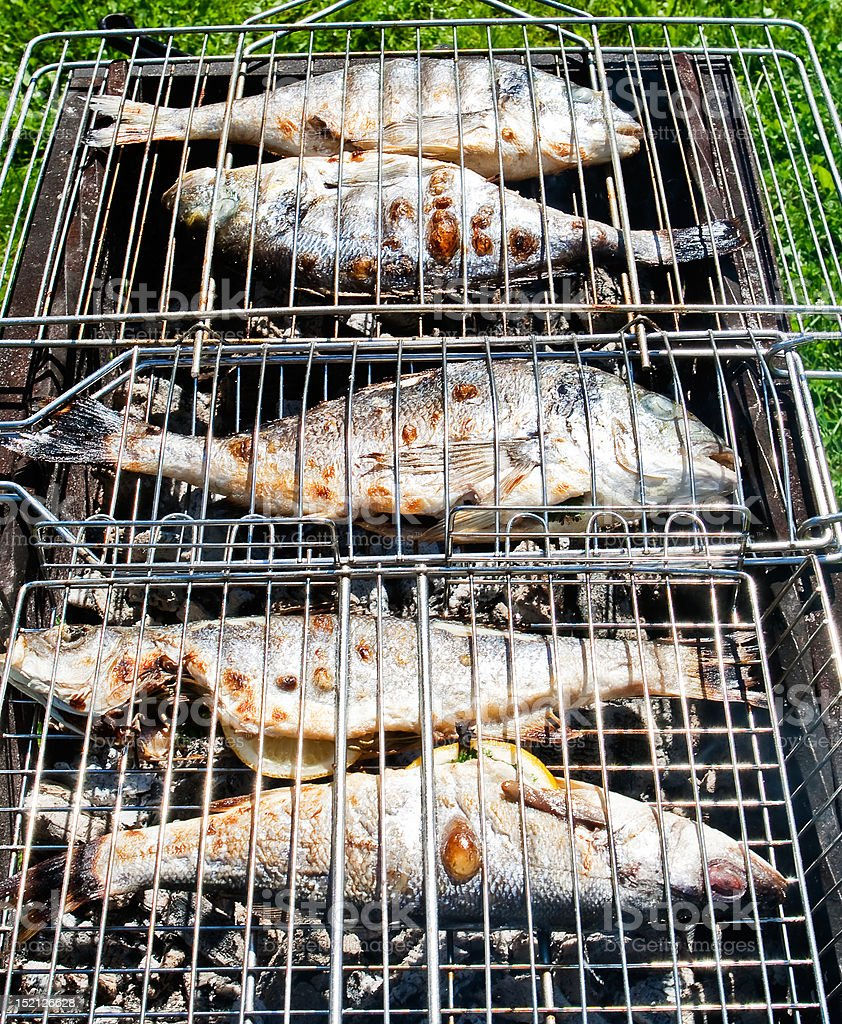 Fish on a grill royalty-free stock photo