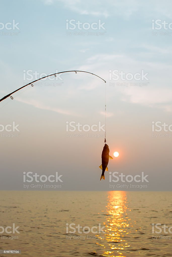 fish on a hook on the sunset background stock photo