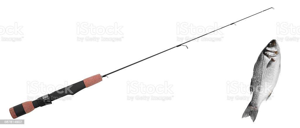 fish on fishing-rod stock photo