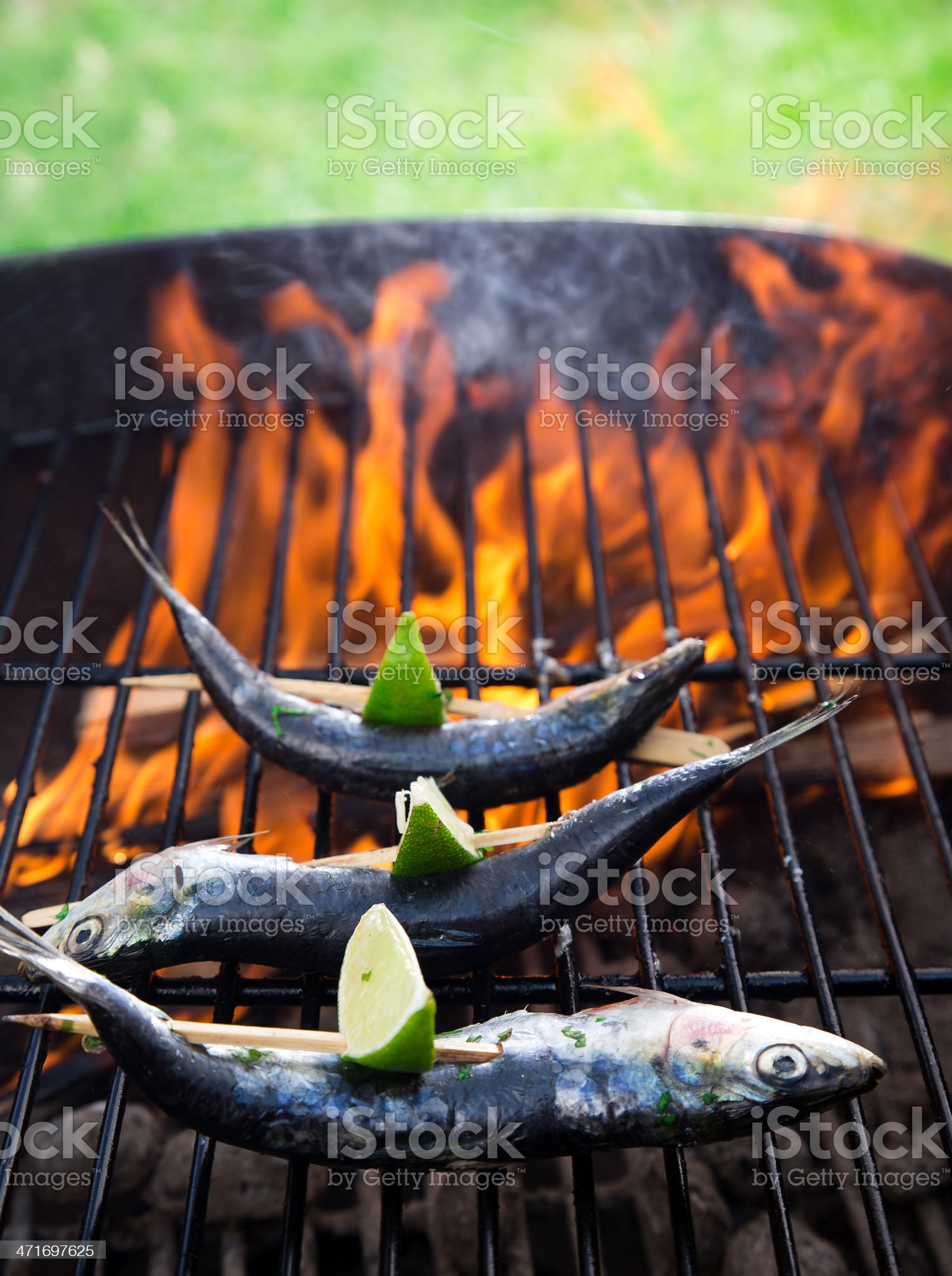 Fish on grill royalty-free stock photo