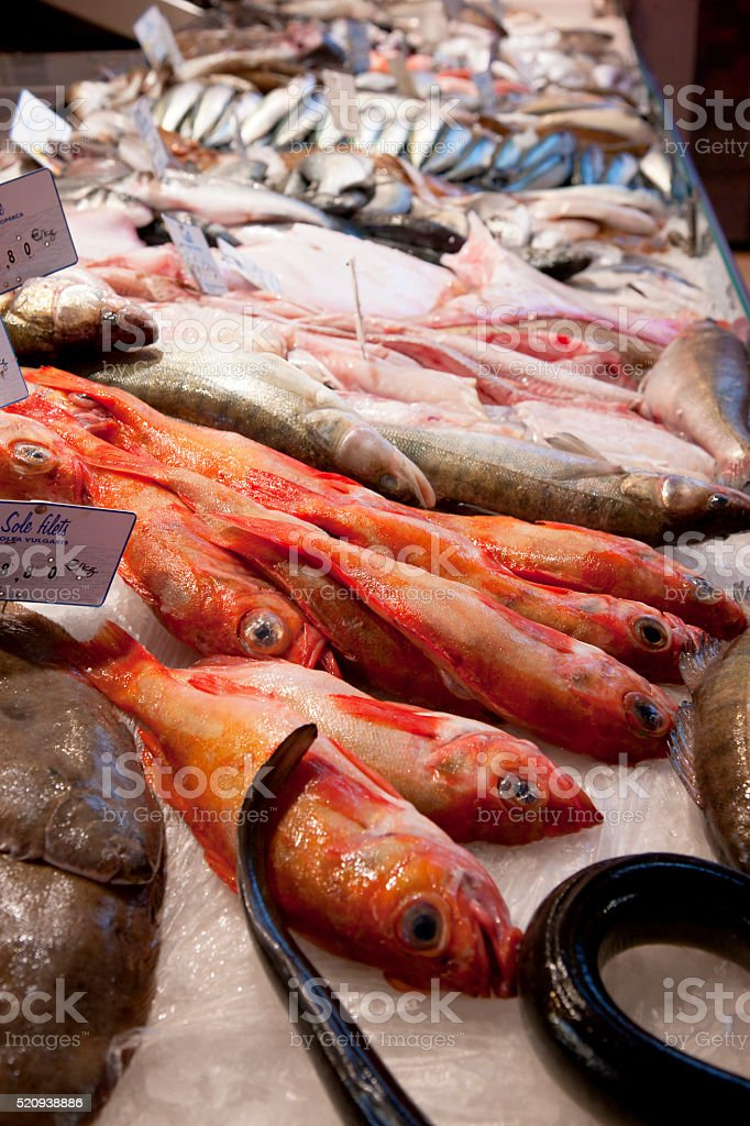 Fish on ice at Les Halles market in Dijon, France stock photo