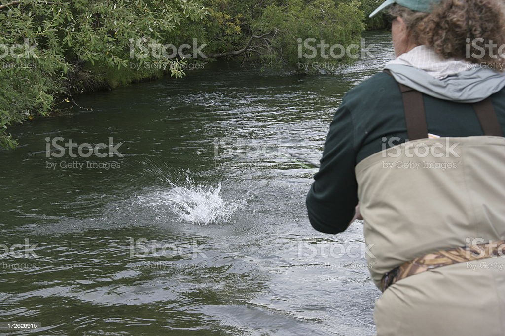 Fish On! royalty-free stock photo