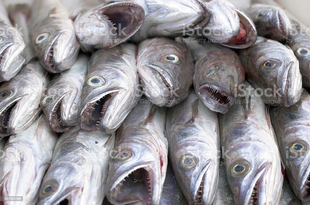 Pesce sul commercio foto stock royalty-free