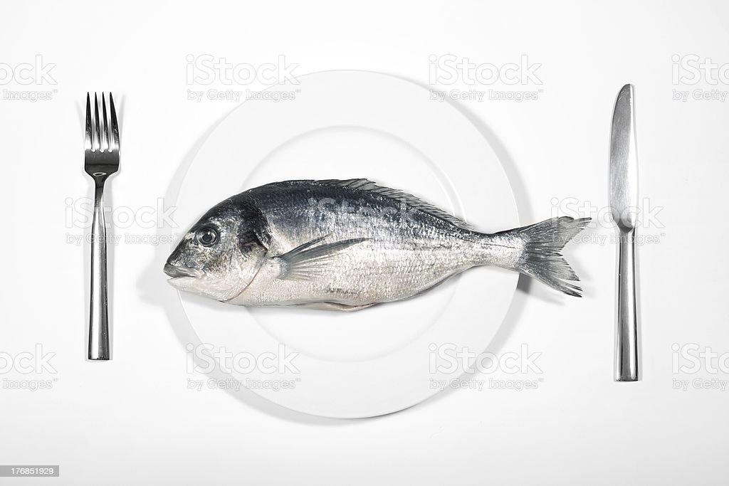 Fish on white plate with cutlery royalty-free stock photo