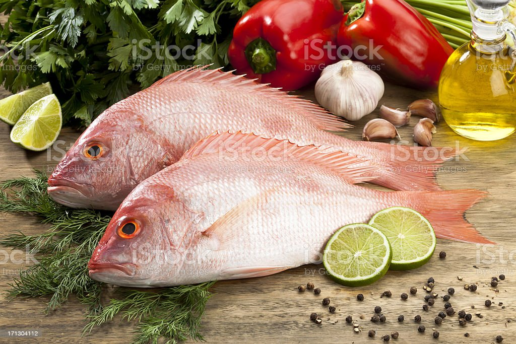 Fish: Red Snapper stock photo
