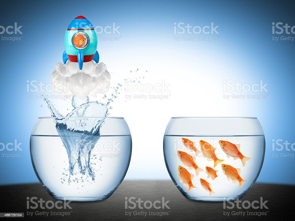 fish rocket concept stock photo