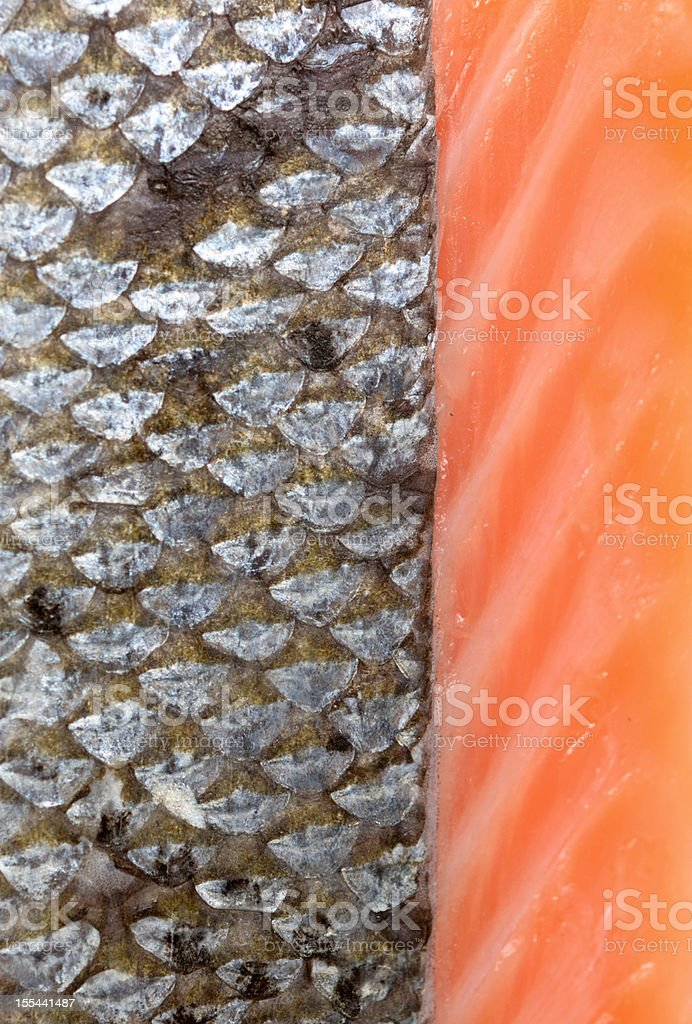 fish scales royalty-free stock photo