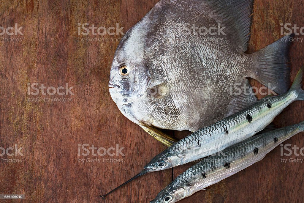 fish scales stock photo